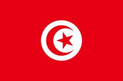Meteologix Tunisia